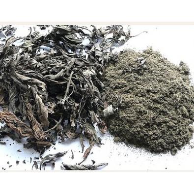 Titepati, Ganden Khaenpa (luzem 10 g)