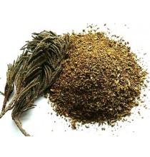 Jałowiec Himalajski (luzem 50g)