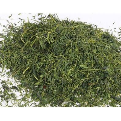 Herbata Jiaogulan - ZIOŁO NIEŚMIERTELNOŚCI - 50g