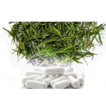 BAMBUS ekstrakt 75%, naturalny KRZEM - kapsułki (100 szt)