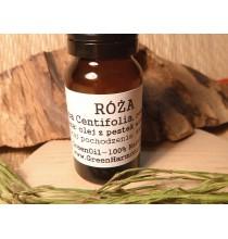 Róża (olejek eteryczny GreenOil, rozczyn 5%) - PIĘKNY ZAPACH!