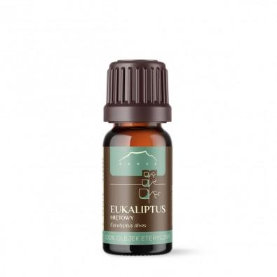 Eukaliptus Miętowy (Eucalyptus Dives) olejek eteryczny - WSPIERA PŁUCA I OSKRZELA