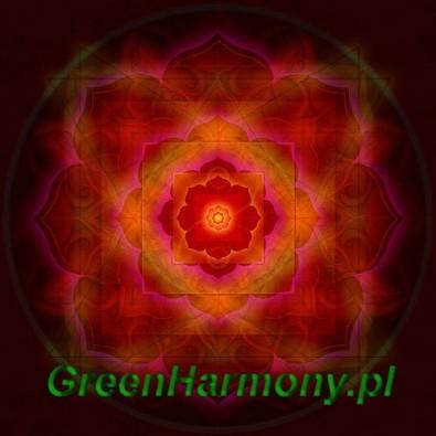 Mandala RED LIGHT