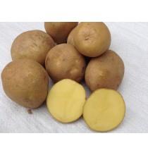 Ziemniaki Michalina BIO - z ekologicznej uprawy (1kg)