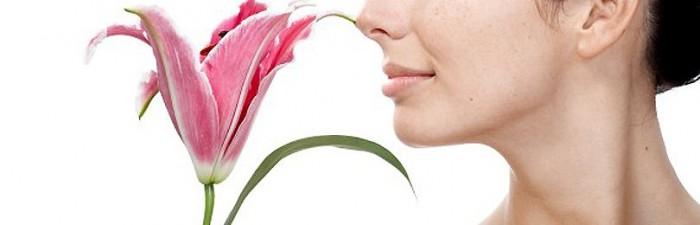 Zapach