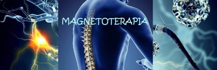 POLE MAGNETYCZNE (magnetoterapia)